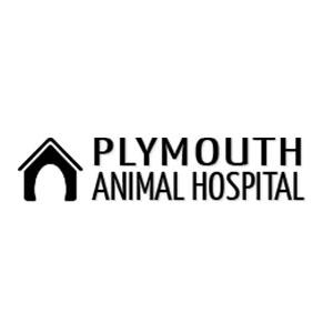Plymouth Animal Hospital, MA