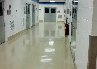 Pharmaceutical Floors